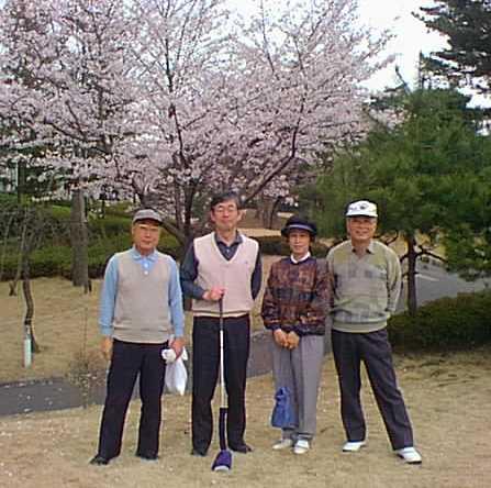 golf803.jpg